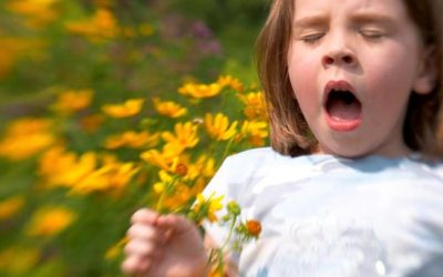 Tips For How To Prevent Seasonal Allergies For Your Child…