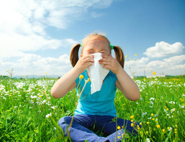 Allergy Problems? – Try Some of These Allergy Treatment Options To Get Some Relief!